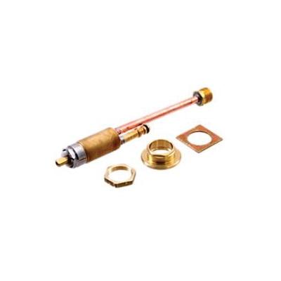 Brizo® RP54856 Vesi® End Valve Assembly, Domestic