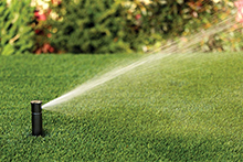 Watering, Irrigation & Drainage
